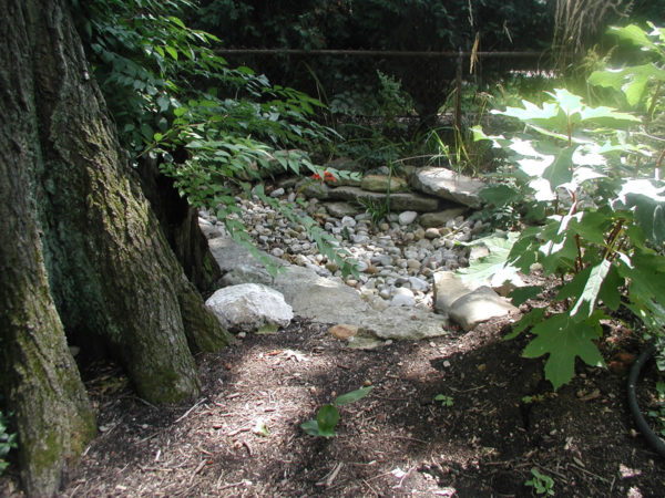 Darby Stone Dry Creek Ground Cover